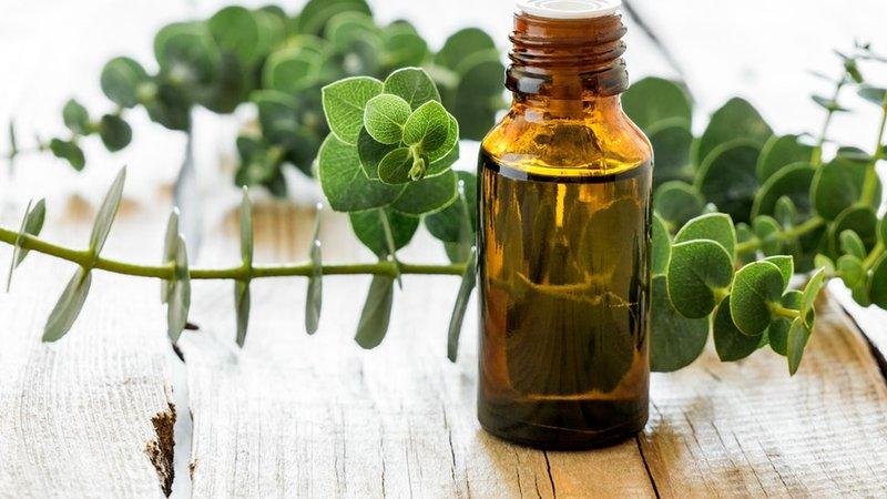 Essential oil untuk ibu hamil