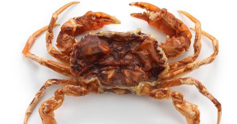 jenis kepiting