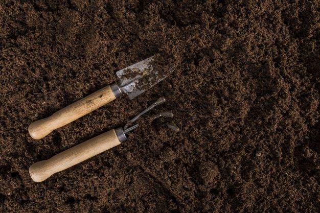 manfaat cacing tanah untuk pupuk kompos
