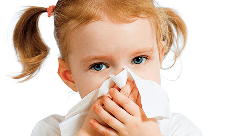Flu Alergi