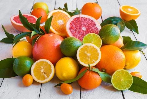 imunitas jeruk