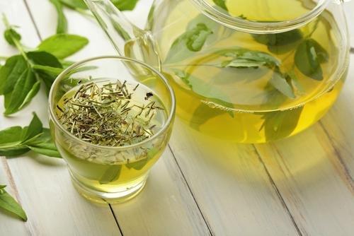 imunitas teh hijau