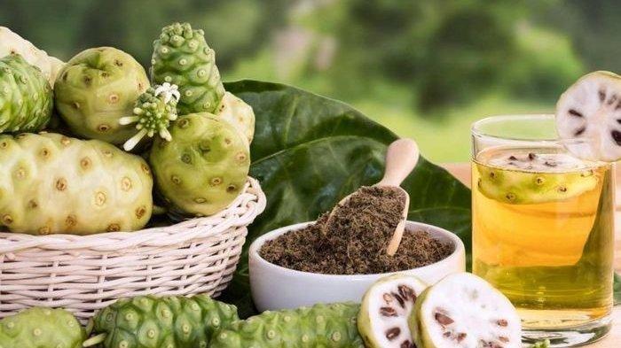 bahaya buah mengkudu