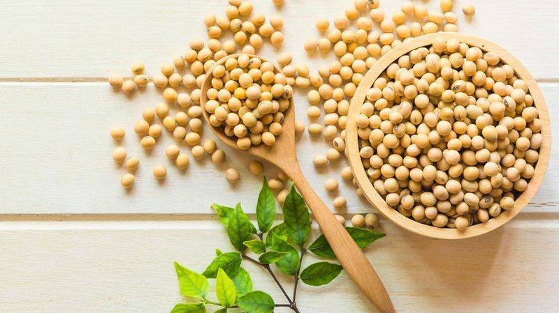 Manfaat Kacang Kedelai Rebus untuk Kesehatan