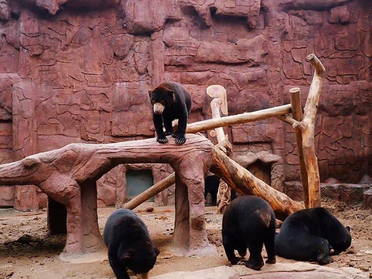 kebun binatang keren-2-2.jpg