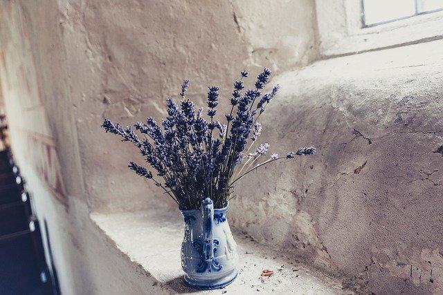 lavender mengurangi kecemasan