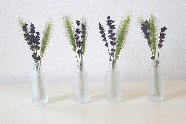 manfaat lavender untuk mempercantik rumah