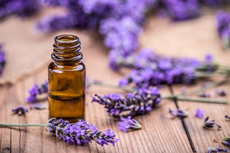 lavender-aromatherapy- equimanagement.com.jpg