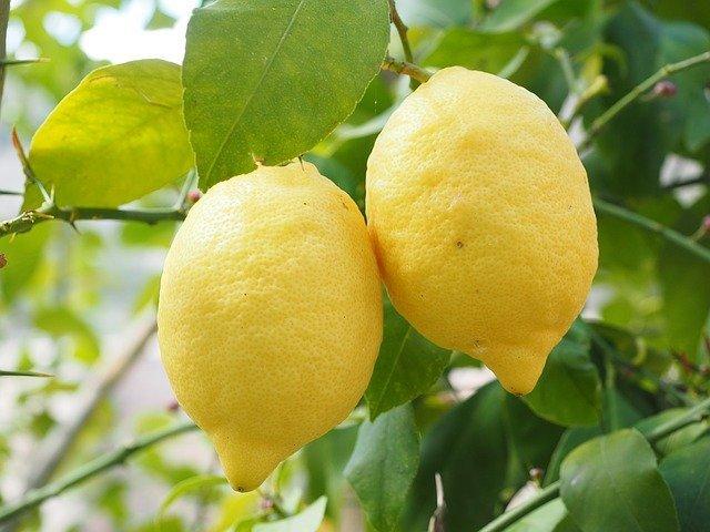 khasiat lemon untuk komedo