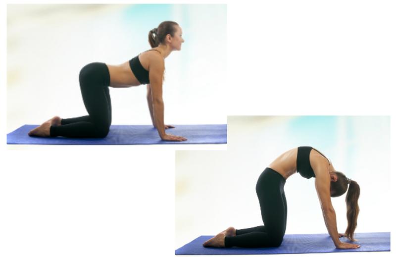 manfaat yoga untuk postur tubuh-2.png