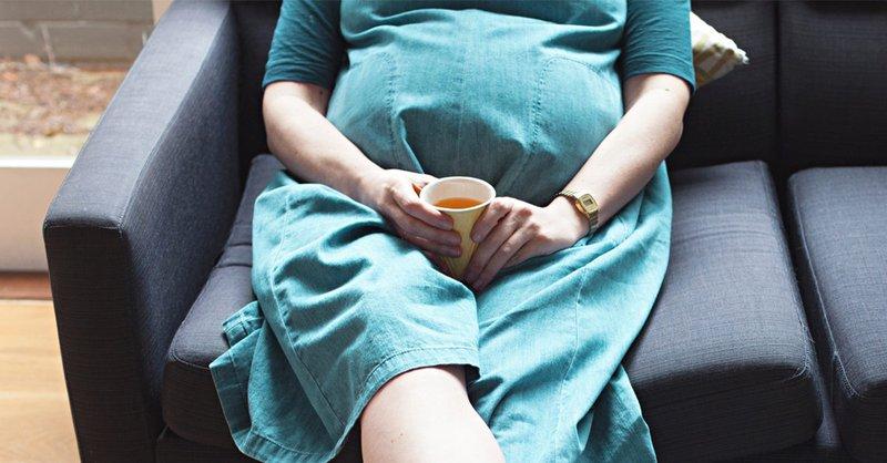 mengonsumsi kombucha saat hamil 4.jpg