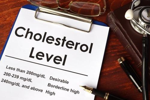 mengurangi kadar kolestrol