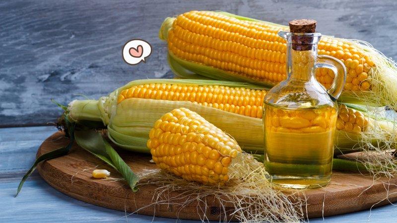 minyak-jagung.jpg