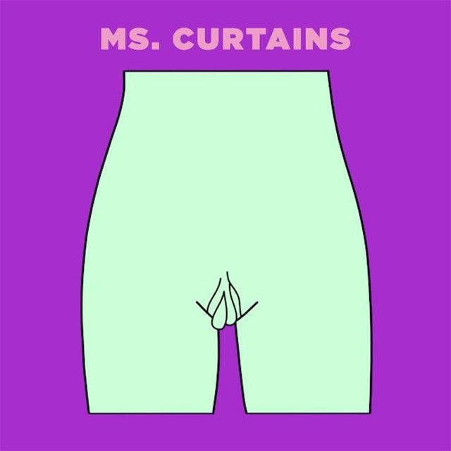 ms curtains vagina illustration