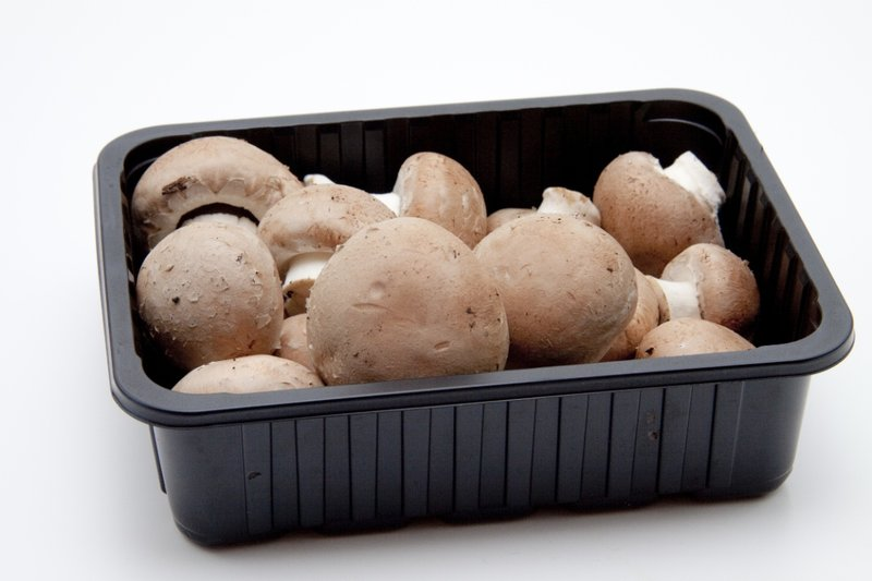 cara menyimpan jamur