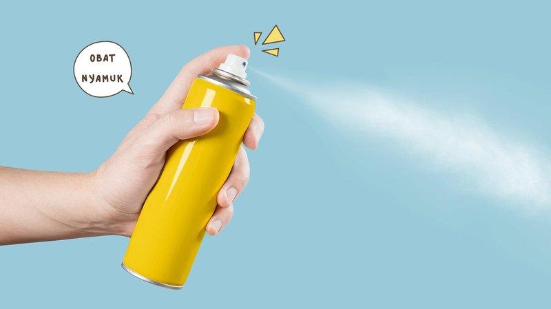Gunakan Semprotan Anti Nyamuk