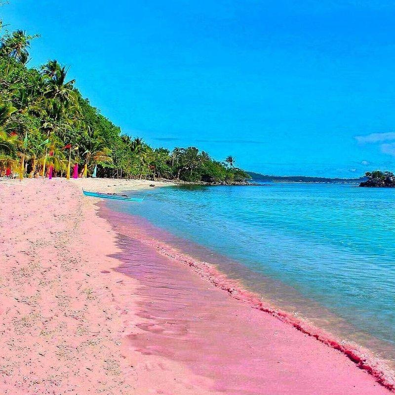 pantai pink-3.jpg