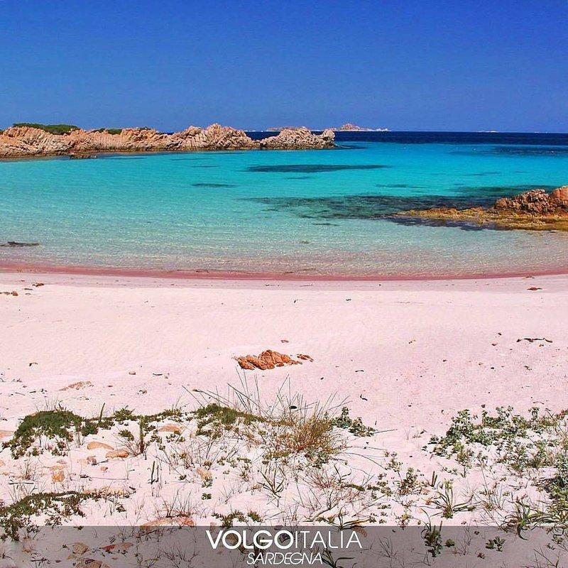 pantai pink-4.jpg