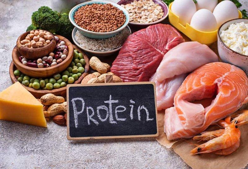 pentingnya protein hewani mpasi pertama - nutrisi protein hewani.jpg