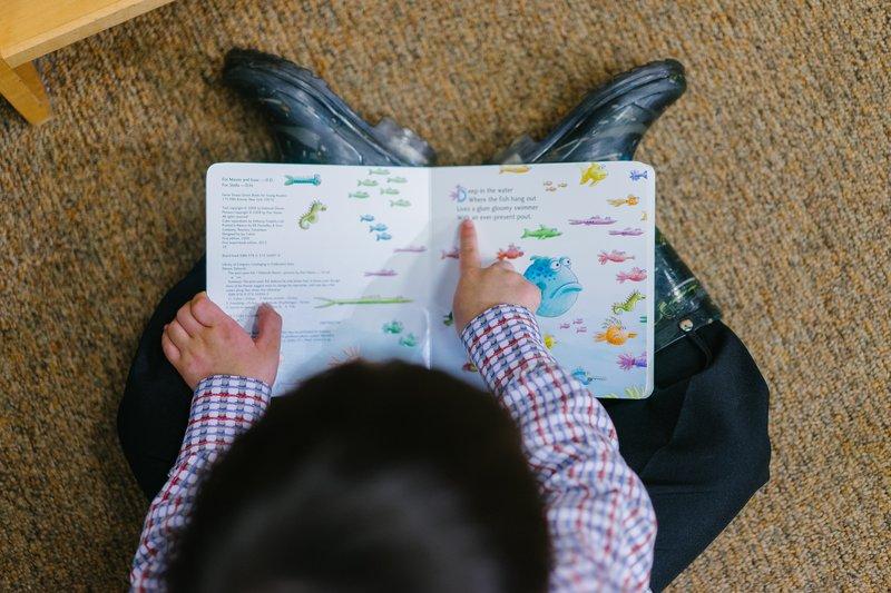photo-of-a-boy-reading-book-1250722.jpg