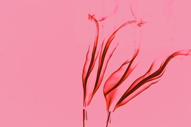 Kondisi Menstruasi Bisa Jadi 'Gambaran' Peluang Hamil, Simak Ini! 2