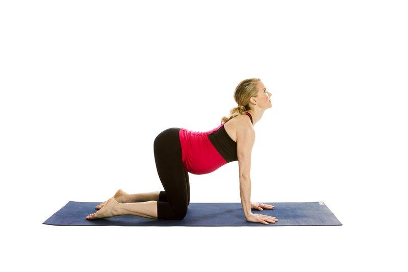 prenatal cow pose