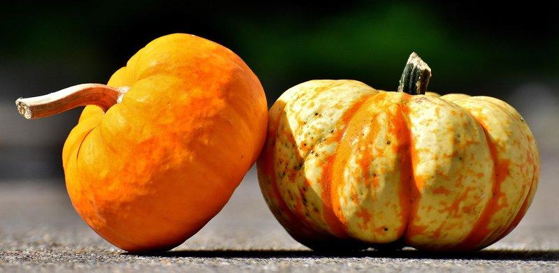 pumpkins 2825186 1920