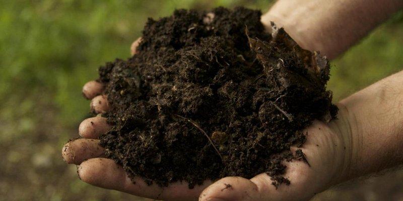 pupuk organik jenis dan manfaatnya