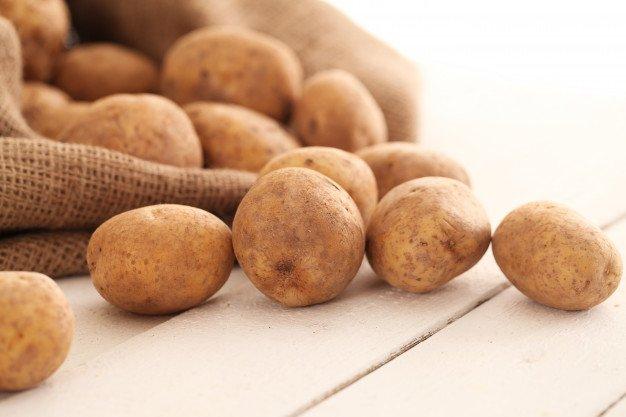 Panen kentang setelah 3 bulan
