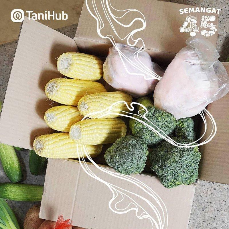 aplikasi belanja sayur online