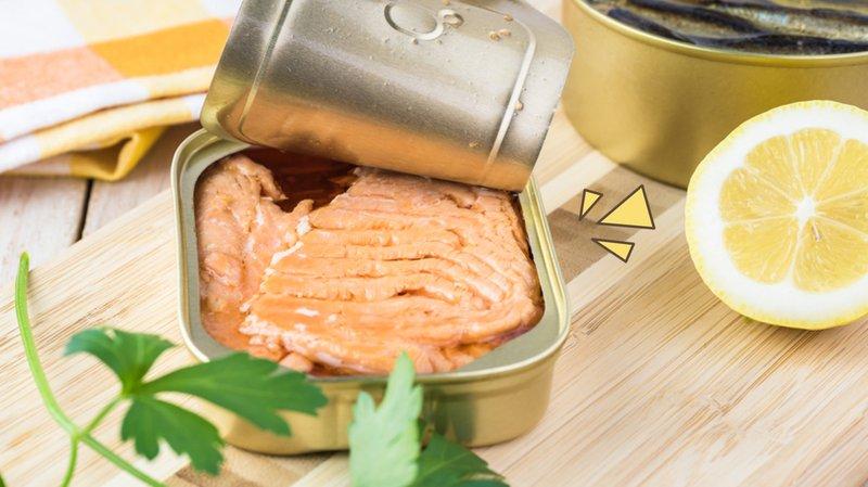 Memberikan Salmon Kalengan untuk Tipes? Ketahui 3 Faktanya!