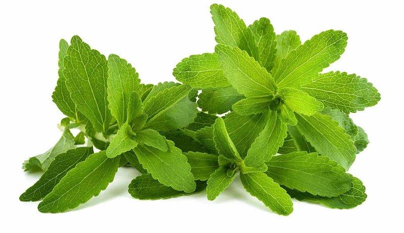 Daun Stevia, Pemanis Alami Rendah Kalori