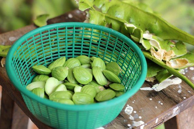 stink-beans.jpg