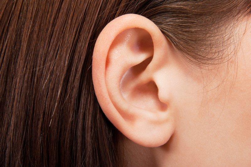 telinga.jpg