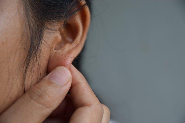 telinga berdenging 2.jpg