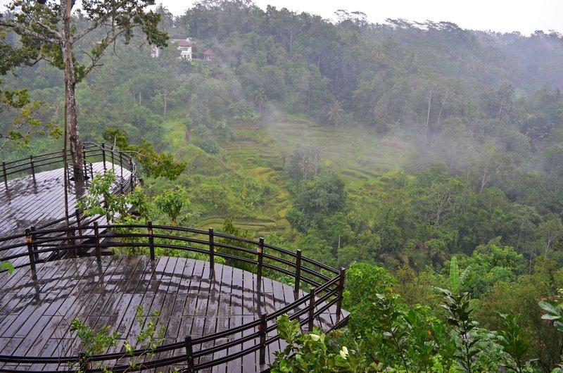 Bali Pulina.jpg