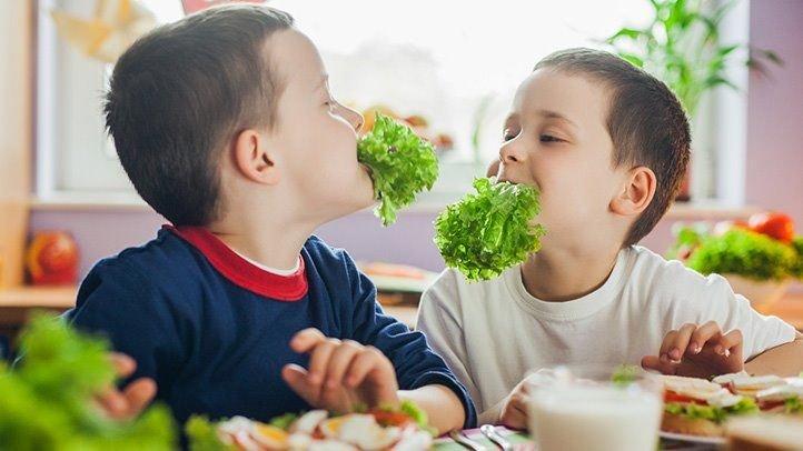 tips anak susah makan