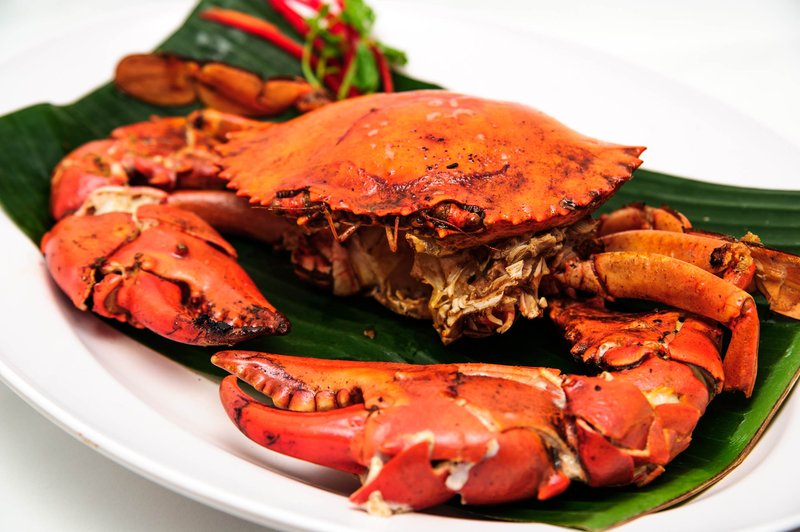 tips ibu hamil makan kepiting.jpg