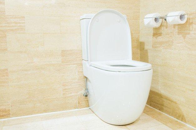 Pembersih lantai kamar mandi