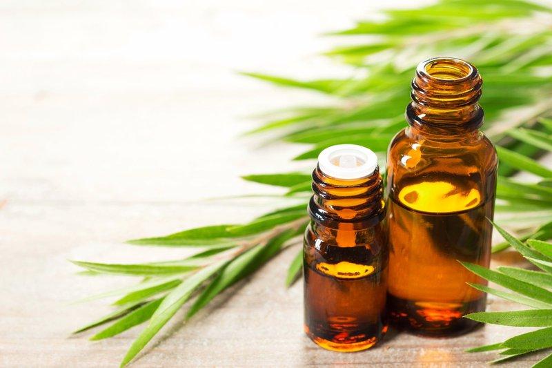 tea tree oil cara menghilangkan komedo putih