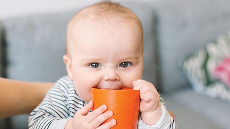 anak minum air putih, biasakan anak minum, air putih