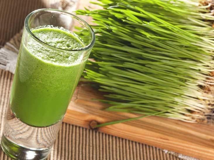 rumput gandum untuk kesehatan