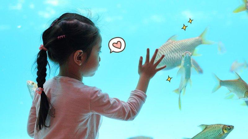 yuk ajak anak wisata aquarium hero